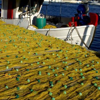 Barques - Filets
