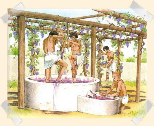 Vin pressage antique