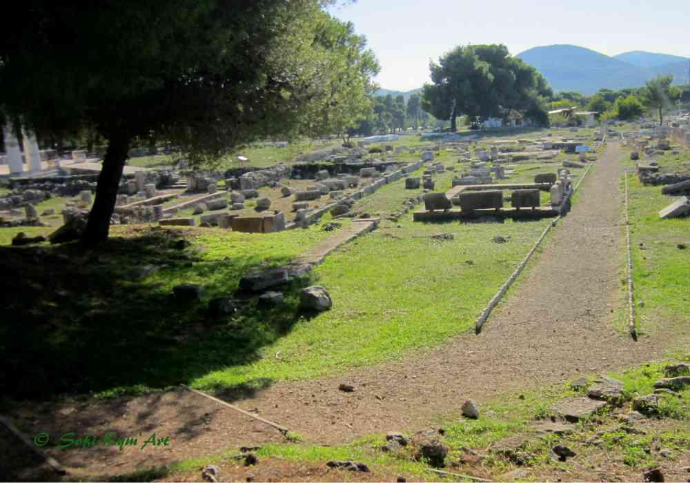 Epidaure-IMG_6735