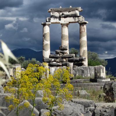 Delphes-IMG_7460-Tholos