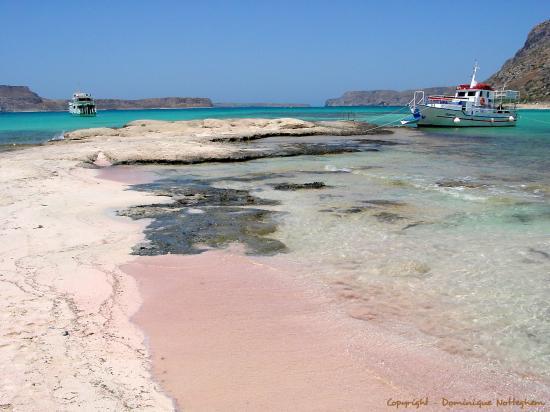 Merveille de Crete