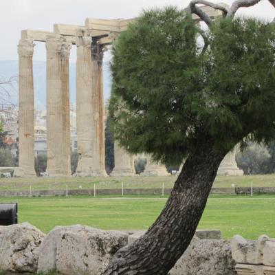 Temple de Zeus Olympien-IMG_1154