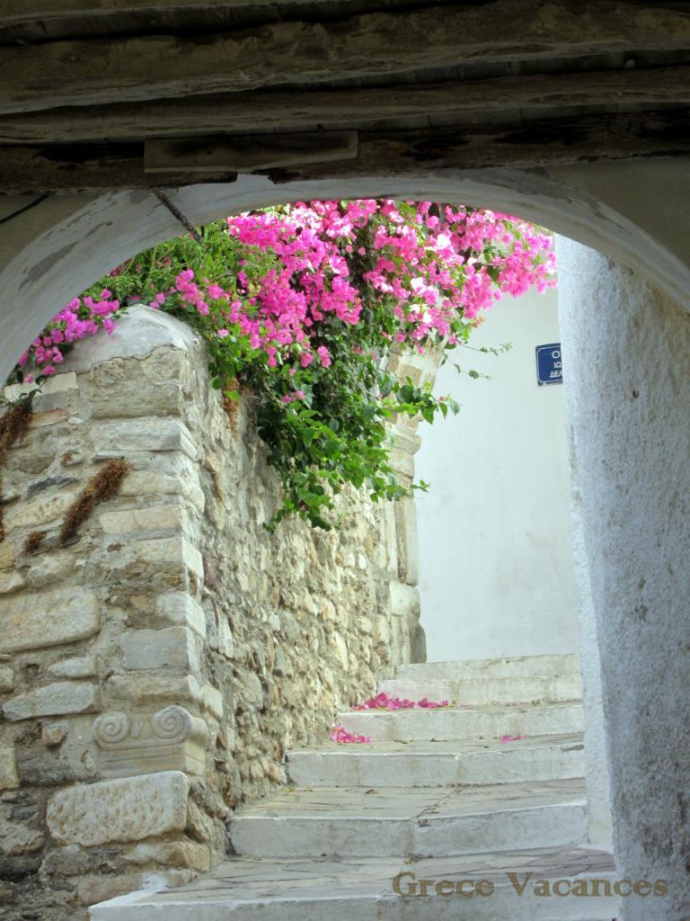 IMG_5167-GV Naxos chora-ip