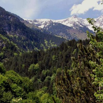 Mont Olympe-IMG_9045