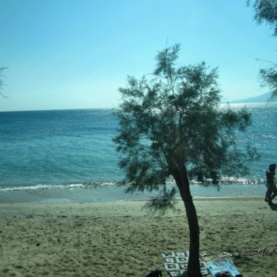 Naxos img 6063