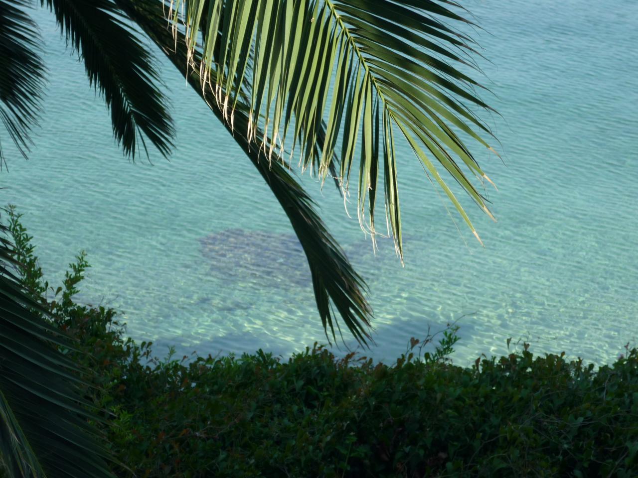 plage à Chorto Pelion
