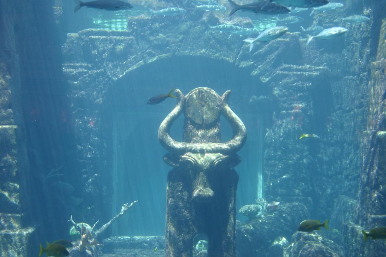 Santorin 17 les profondeurs d'un mythe