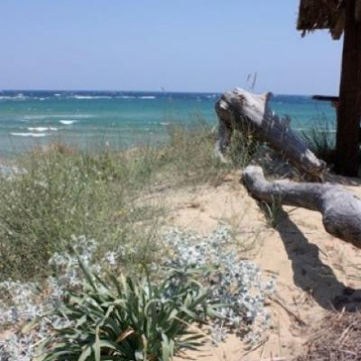 Sporades06-Skiathos