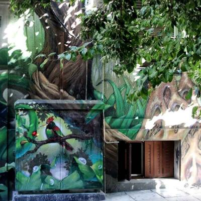 Street art img 6008