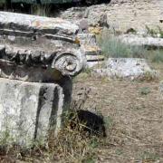 Epidaure img 8373 b