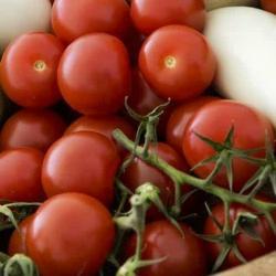 Tomates 07